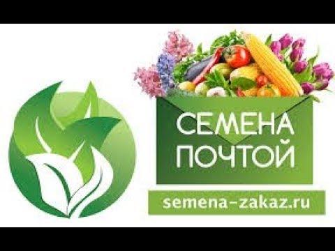 купить семена почтой - YouTube