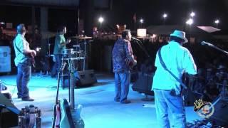 Wayne Toups & ZydeCajun   Tupelo Honey