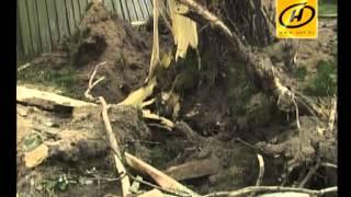 Сильнейший шторм в Брестской области, видео, 2012(Без электричества остались более 400 населённых пунктов, у сотен домов повреждены крыши. Сейчас последствия..., 2012-08-07T16:41:14.000Z)