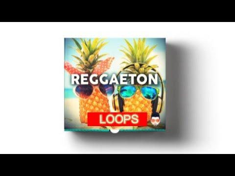 MODERN REGGAETON LOOPS - LOS MEJORES LOOPS