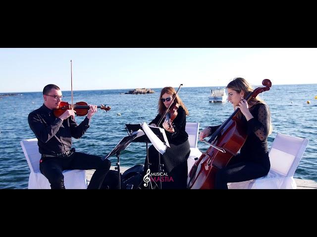 Vive la Vida | Calabardina | Musica para Bodas | Musical Mastia