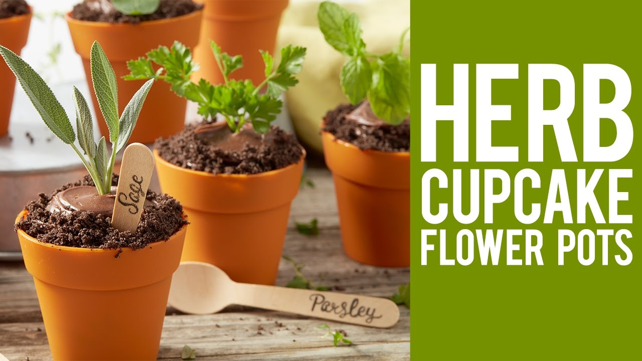 How to Make Herb Cupcake Flower Pots & How to Make Herb Cupcake Flower Pots - YouTube
