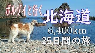 ボルゾイとの二人(人1、ペット1)旅です。往路は青森~函館、復路は函館...
