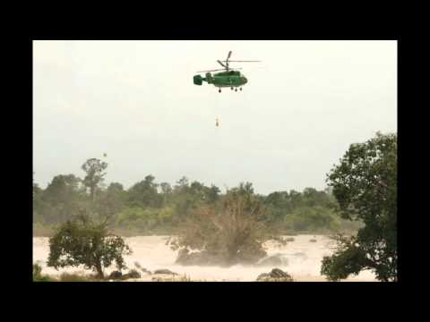 Helicopter crews unable to save sacred tree