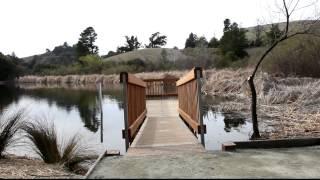 2012-02-26 Alpine Pond in Skyline Ridge Open Space Preserve.