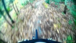 Mountain Biking, Camp Lejeune trail