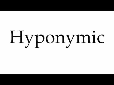 How to Pronounce Hyponymic