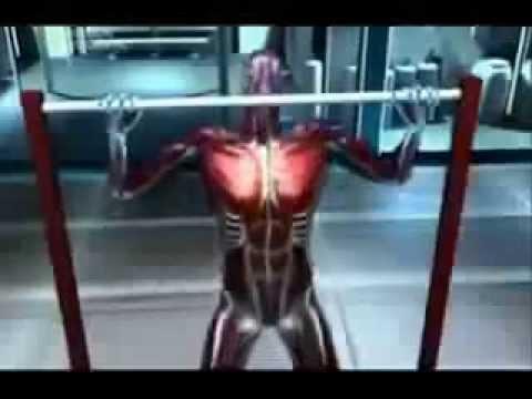 Рельефные мышцы и красивая грудь — как правильно