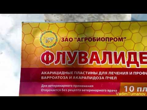 Применение препарата для пчел Флувалидез
