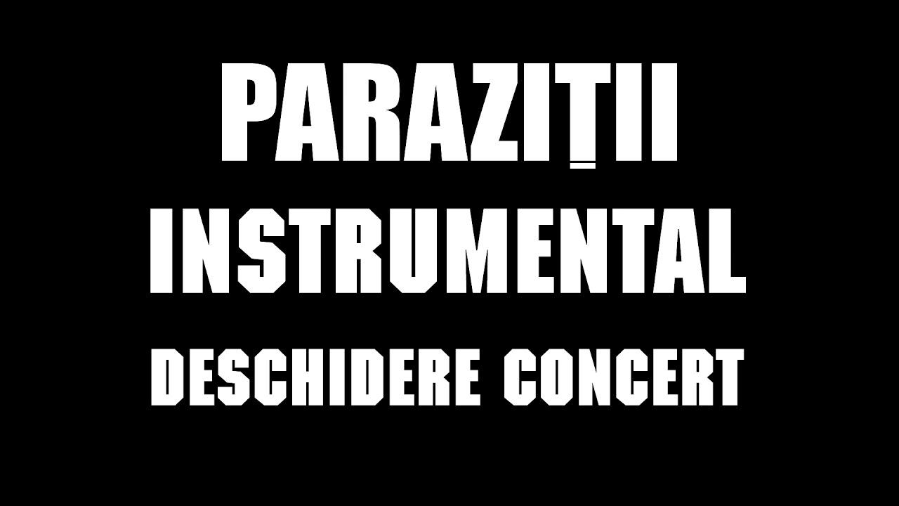 instrumental parazitii ringtone