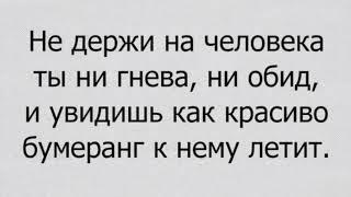 Из сети..)