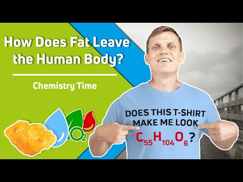 How Does Fat Leave the Human Body? Chemistry Time