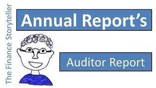 Auditor report in the annual report