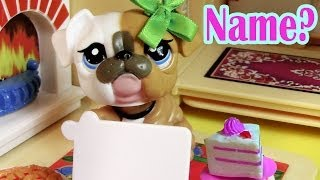 Baby Name? - Mommies Part 14 Littlest Pet Shop Series Movie LPS Mom Babies