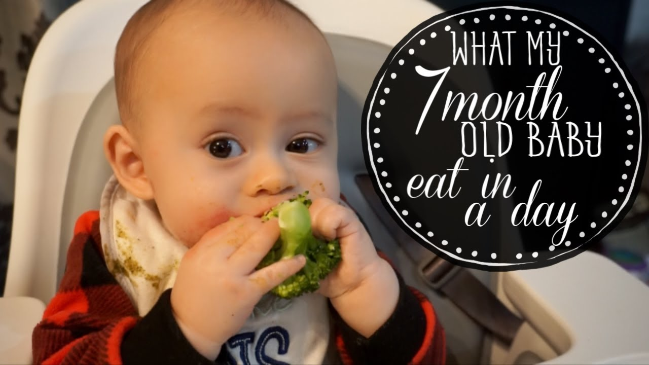 What my 7 month old baby eat in a day - YouTube
