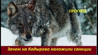 ПРОГНОЗ: Зачем на Кадырова наложили санкции  № 2172