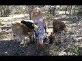Diggin Britt Friends Explorin The Farm