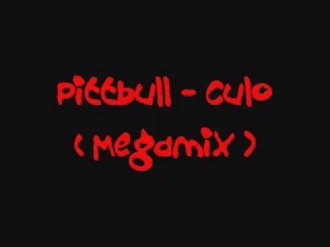 Pittbull - Culo ( Megamix )