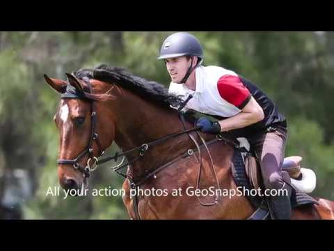Sydney Showjumping Club  Competition Day