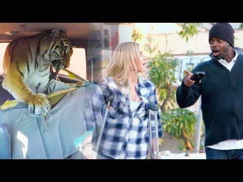 TIGER DESTROY'S CAR PRANK!!! | Prank Academy