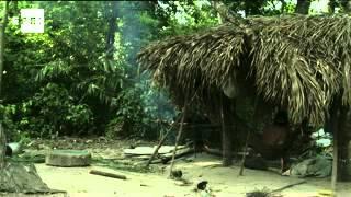 Survival International denuncia el acoso a la tribu más amenazada del planeta