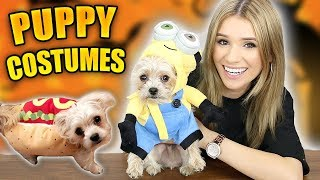 Puppies Try VIRAL Halloween Costumes! (INSANELY CUTE)