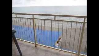 Эллинги в Лоо на берегу моря(, 2015-05-26T06:48:36.000Z)