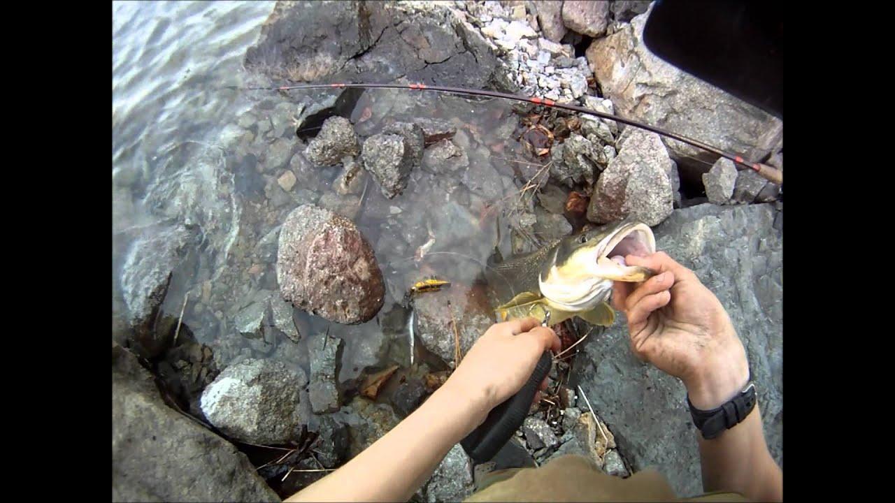 Fishing penticton
