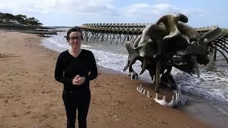 Serpent d'océan / Huang Yong Ping / vidéo LSF