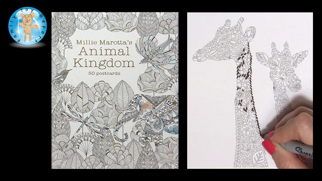 Millie Marottas Animal Kingdom 50 Postcards Adult Coloring Book Giraffe