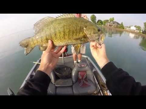 Lake St. Clair Smallmouth Fishing - So Many Giants!