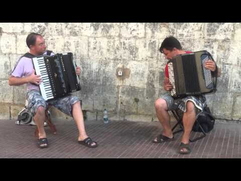 Talented accordion playersItaly