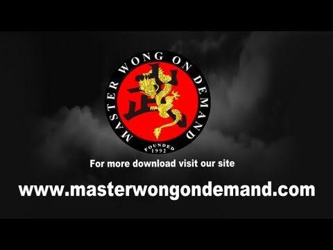 Master Wong on Demand (PC)