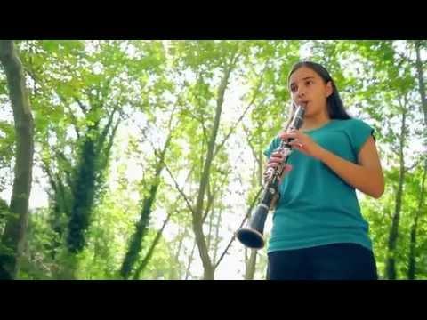 AMAGATS EN UN CALAIX - Associació de Músics de Sant Quirze del Vallès (Tema de SR.SMIZZ)