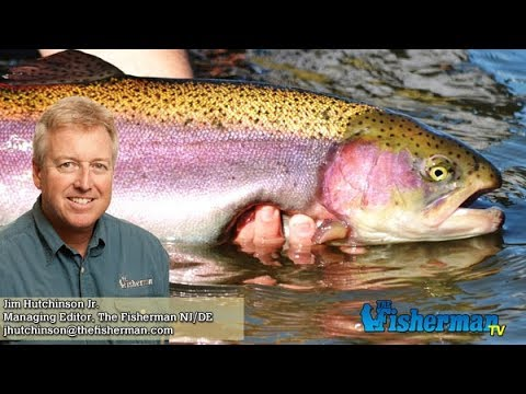April 5, 2018 New Jersey/Delaware Bay Fishing Report with Jim Hutchinson, Jr.