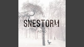 Snestorm