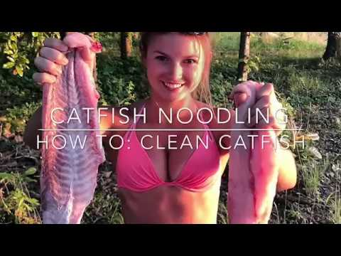 CATFISH NOODLING: How to Clean a Catfish