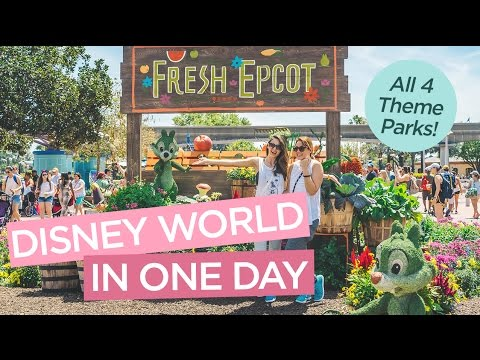 Disney World in One Day - Visit All 4 Theme Parks in Orlando, Florida!