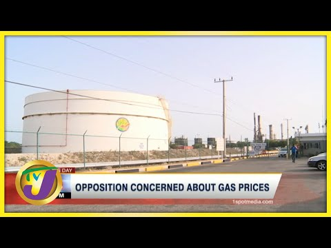 PNP Concerned about Gas Prices in Jamaica | TVJ Business Day - June 22 2021