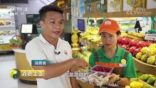 《消费主张》 20190712 这些珍稀水果,你吃过吗?| CCTV财经