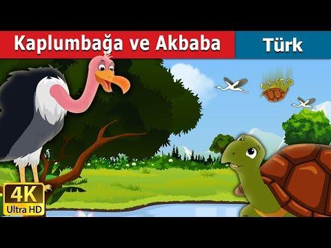 Kaplumbağa ve Akbaba | Tortoise and Vulture Story in Turkish | Peri Masalları | Türkçe peri masallar