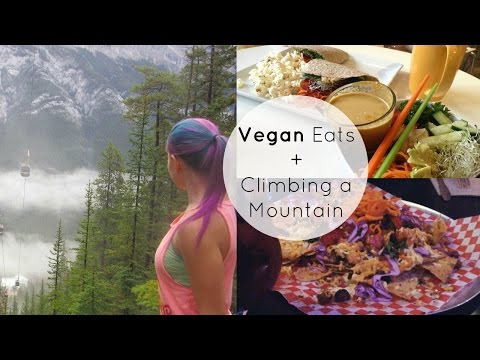Vegan Eats In Banff + Climbing Mountain VLOG