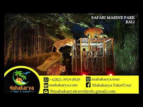 paket-wisata-bali-7-hari-trenggalek-|-+62821-3919-8929-|-mahakarya-tour-and-travel