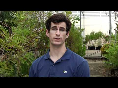 UWA Science majors: Botany