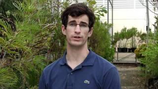 UWA Science majors: Botany