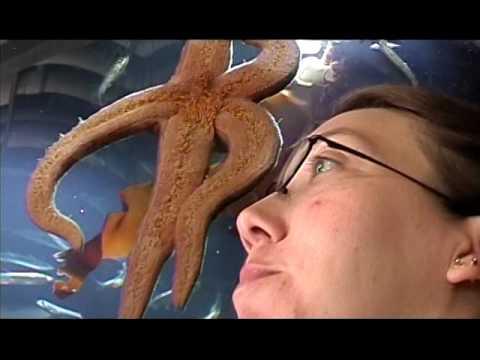 oregon coast aquarium, brett in idaho 2004 1
