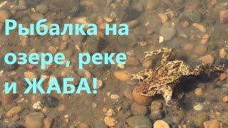 Рыбалка на озере реке и ЖАБА