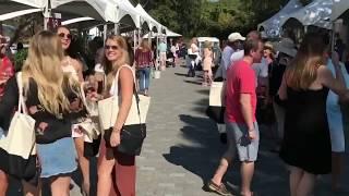 Harvest Wine & Food Fest