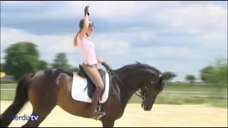 Упражнения на баланс в конном спорте