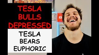 Tesla Bulls In Depression After Tesla Earnings. Tesla Bears Euphoria. Let Me Talk Tesla Stock